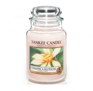 Yankee Candle świeca Classic Large Jar champaca blossom 623g